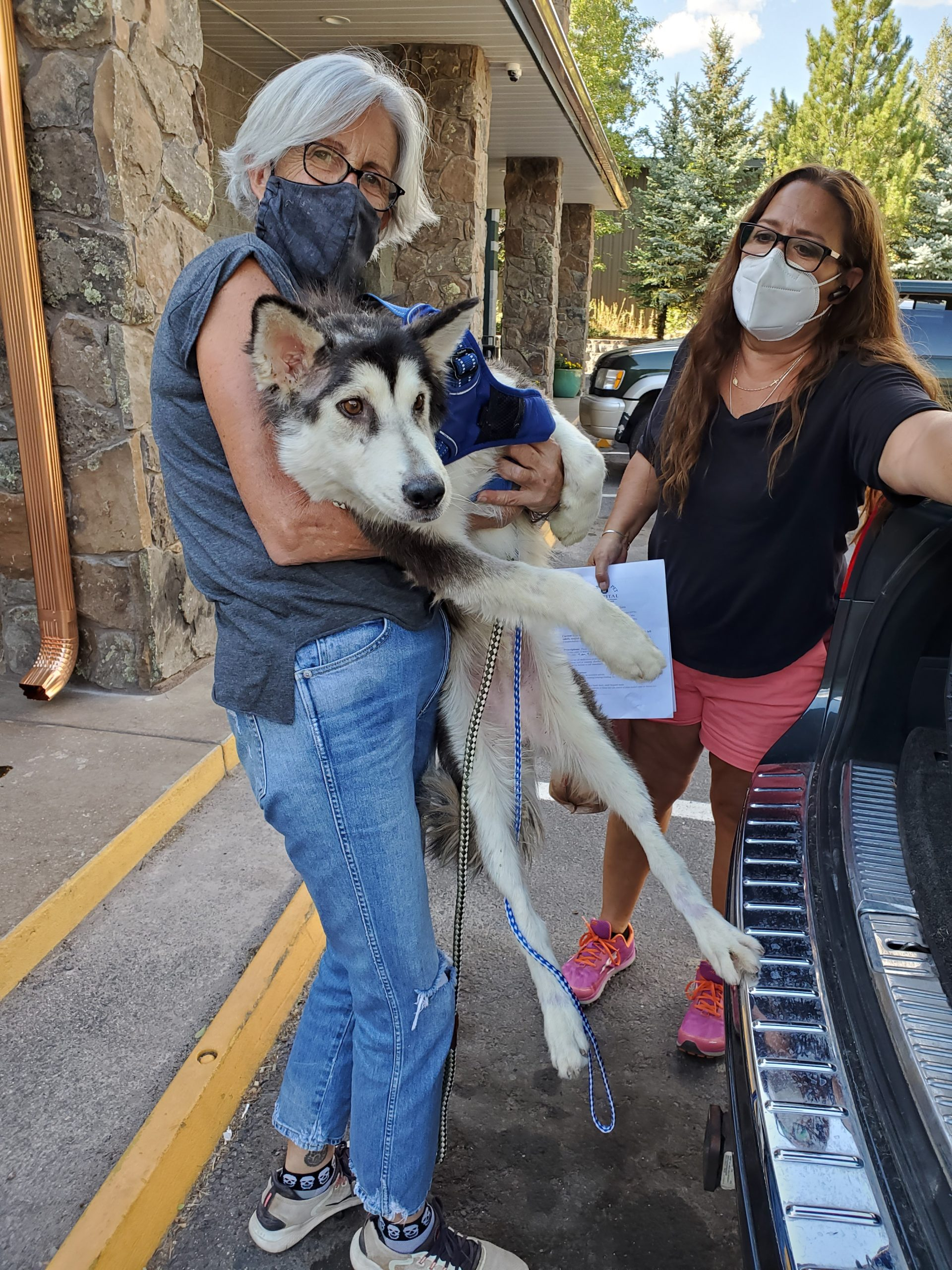 Mary Martin, from Best Friends Animal Society, and Deborah Franklin, from Tuba City Humane Society, picking up Togo from Canyon Pet Hospital in Flagstaff