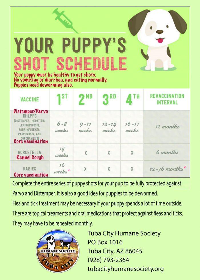 Puppy Shots schedule
